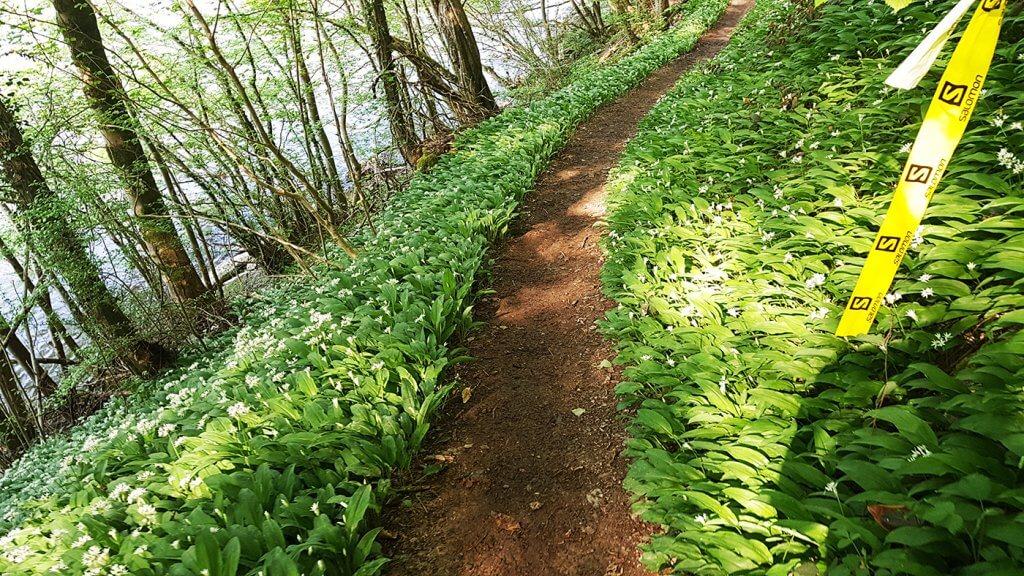 Trail La Bouillonnante