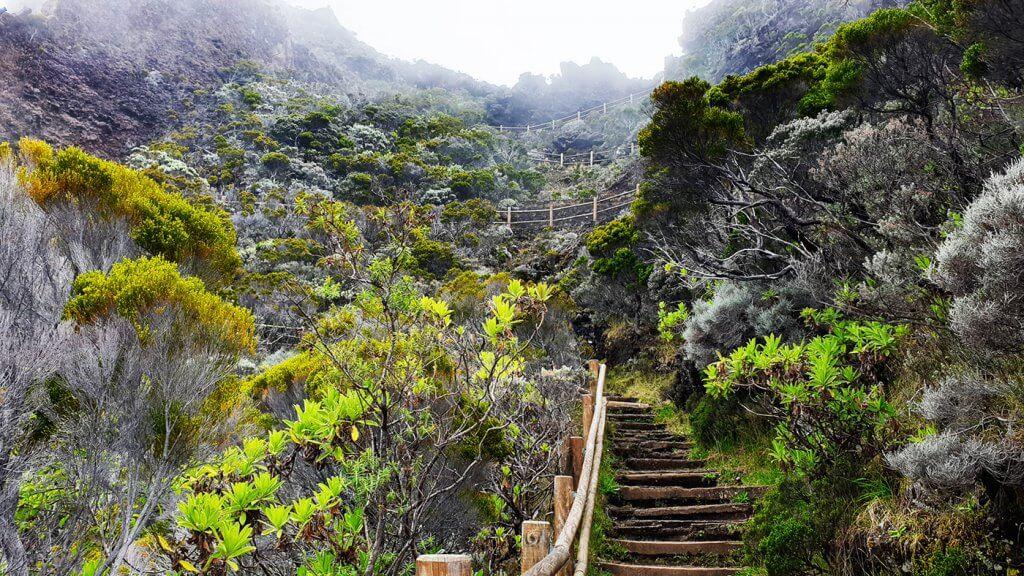Escaliers Pas de Combe